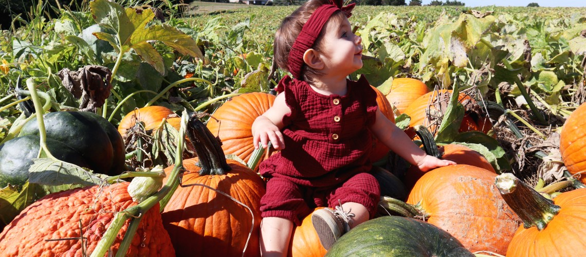 Fall Fun at Baugher's Orchards and Farm